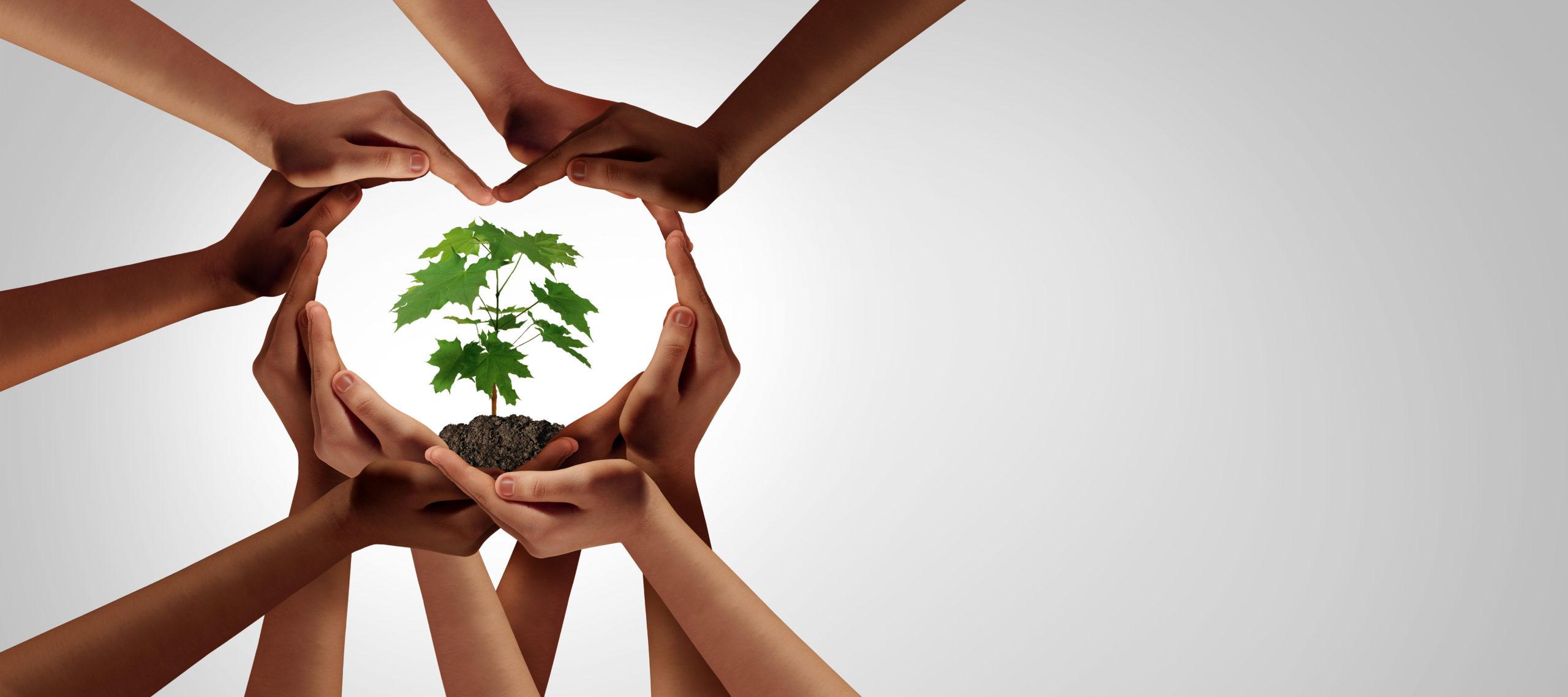 lutopie - ecologie solidaire